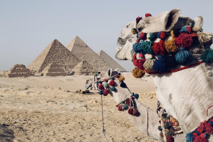 Pourquoi l'Egypte antique suscite-t-elle tant d'admiration ?